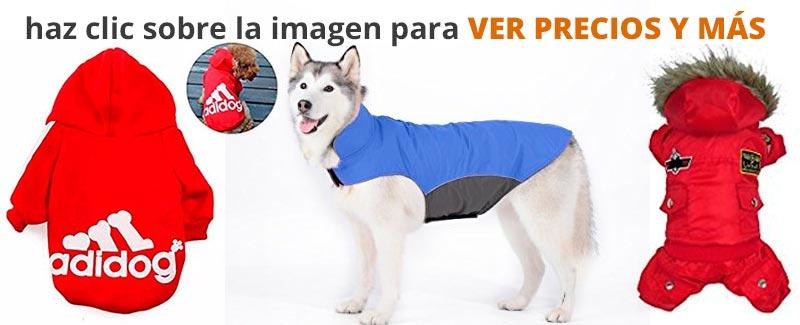 Ver ropa para perros